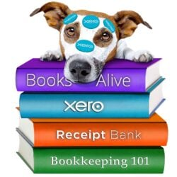 Books Alive Bookkeeping -